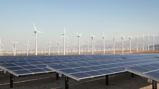 Empresas yucatecas e israelitas impulsarán proyectos de energía – El  Cronista Yucatán