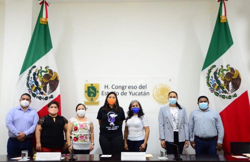 Hay que actualizar el marco jurídico con visión de derechos humanos: Vida Gómez