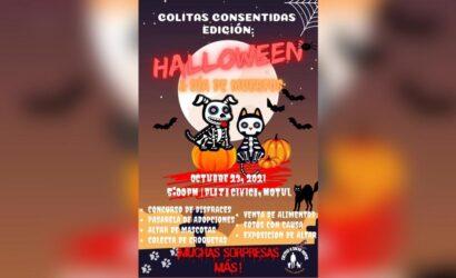 Desfile de disfraces de Colitas a salvo en Motul
